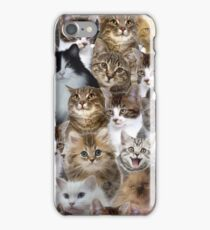 Kitty Cat Faces Pattern  iPhone Case/Skin