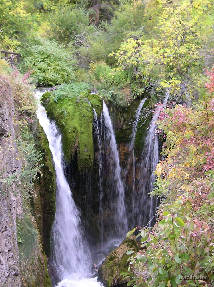 Fall at Roughlock Falls by traciholter