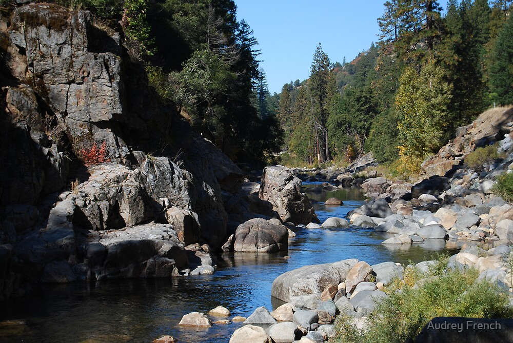 Silverfork River by Audrey French
