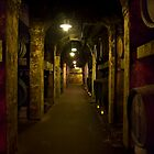Wine Cellar by diggle