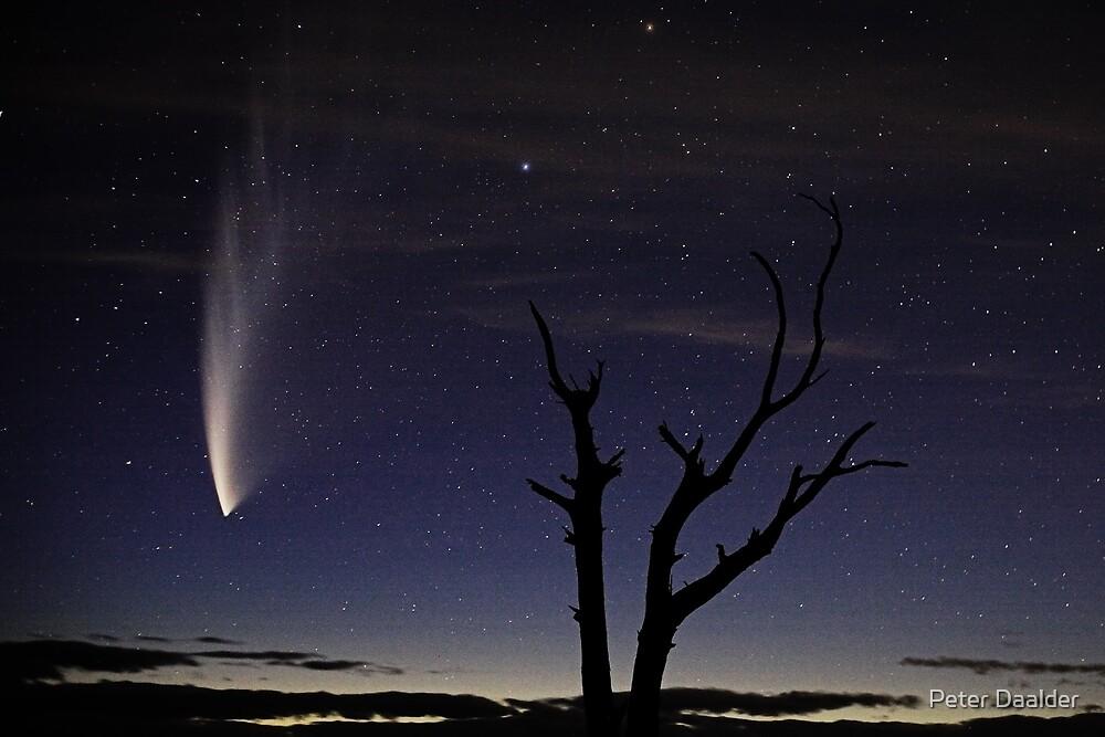 Comet McNaught by Peter Daalder