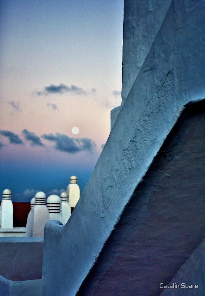 Morning Moon by Catalin Soare