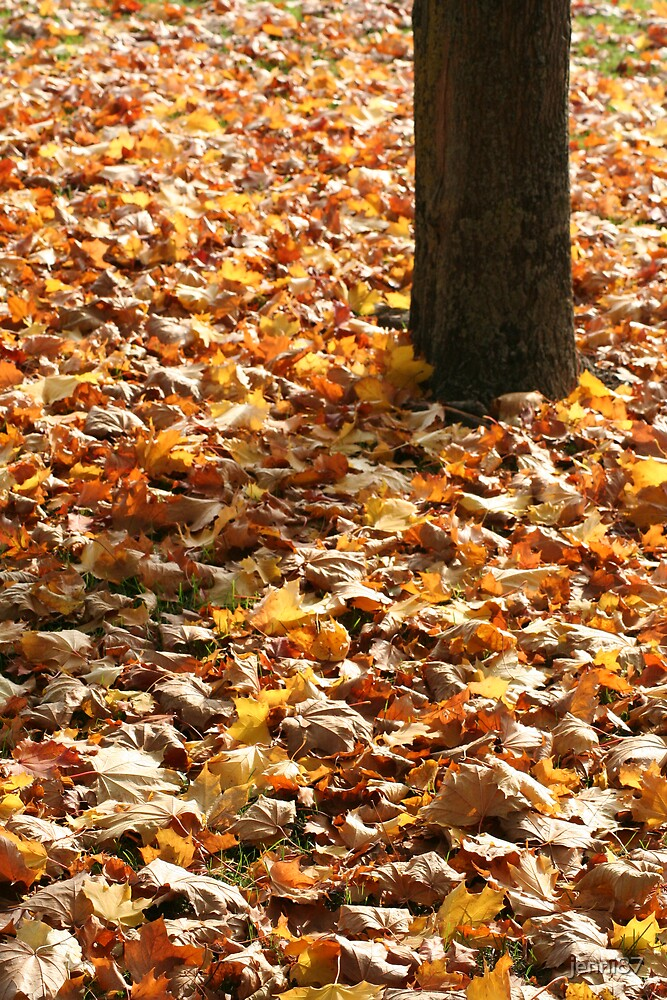 autumn by jenni87