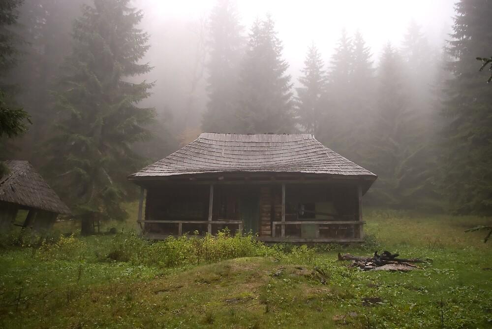 Abandoned hut by ictin