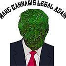 Donald Trump Make Cannabis Legal Again  by Amy Anderson