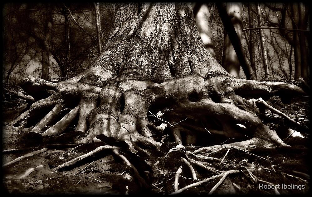 Roots by Robert Ibelings