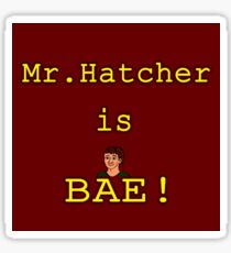 Mr. Hatcher is BAE! Sticker