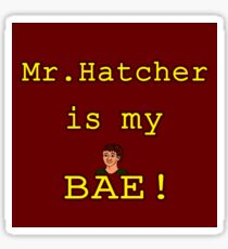 Mr. Hatcher is my BAE! Sticker