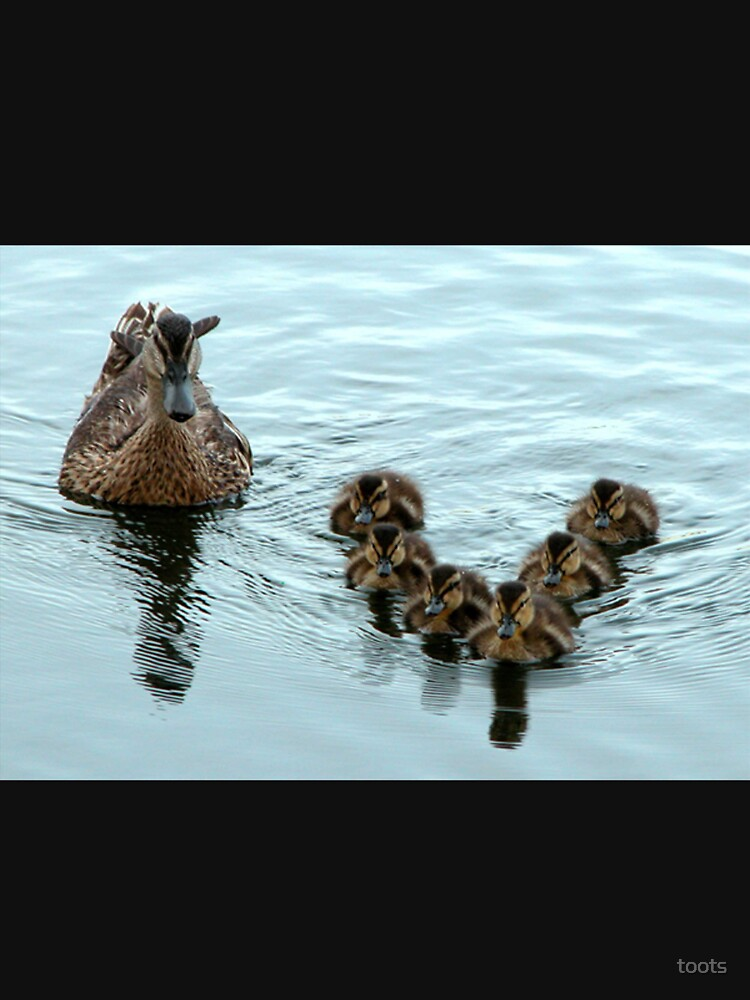 Duck Formation by toots