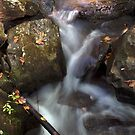 Mountain Stream by Jerry  Mumma