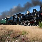Kingston Flyer 795 by phil decocco