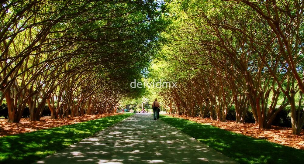 Garden of Eden by deividmx