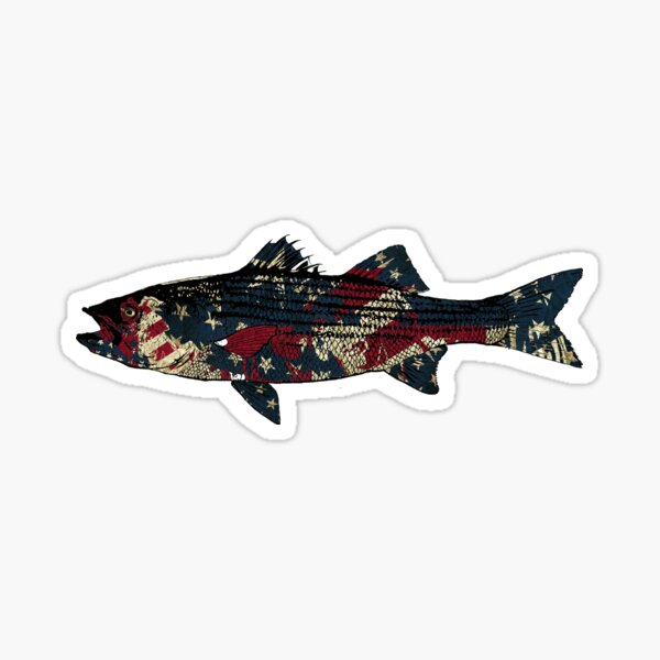 Striped bass American Fishing Sticker