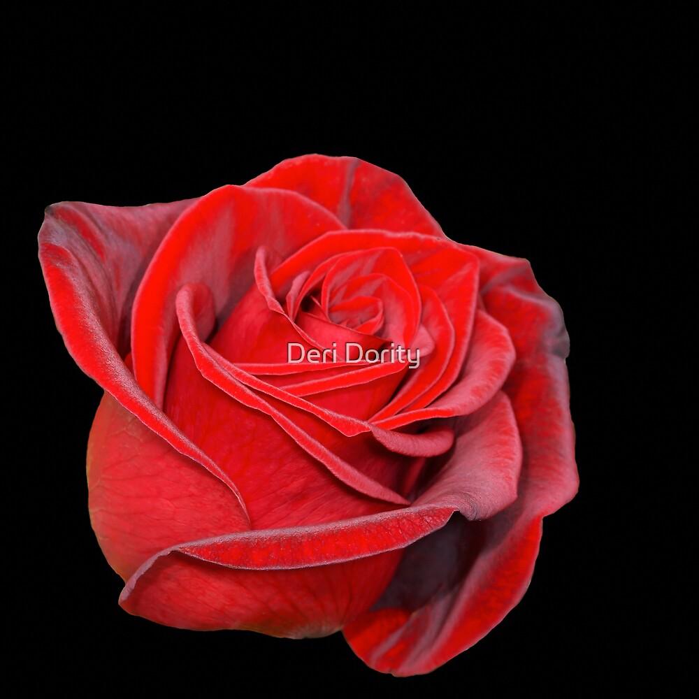 Red on Black by Deri Dority