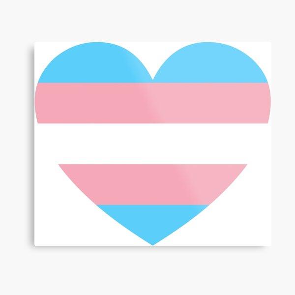 Transgender Triumph  Metal Print