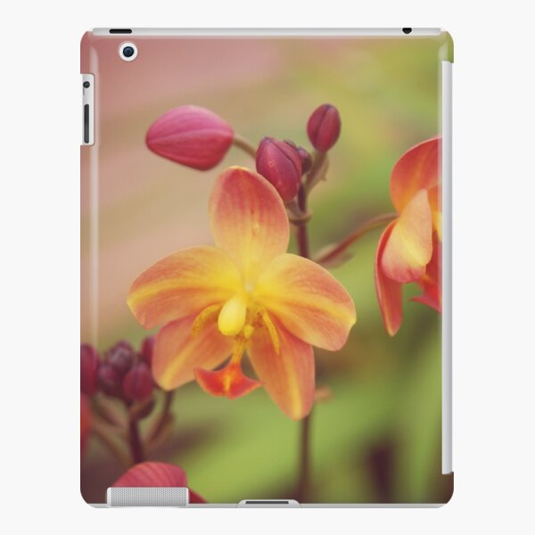 orchid day iPad Snap Case
