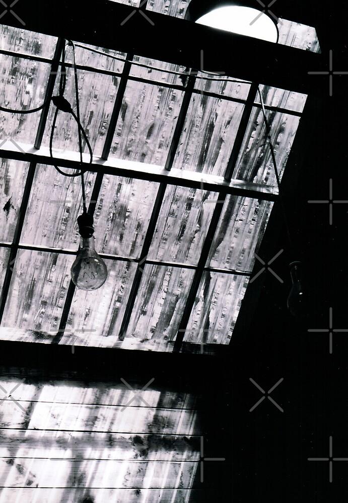 Arthur Boyd's Skylight by Marita