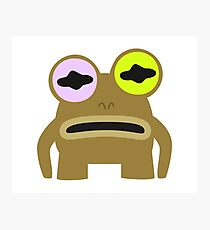 Hypnotize Toad Photographic Print