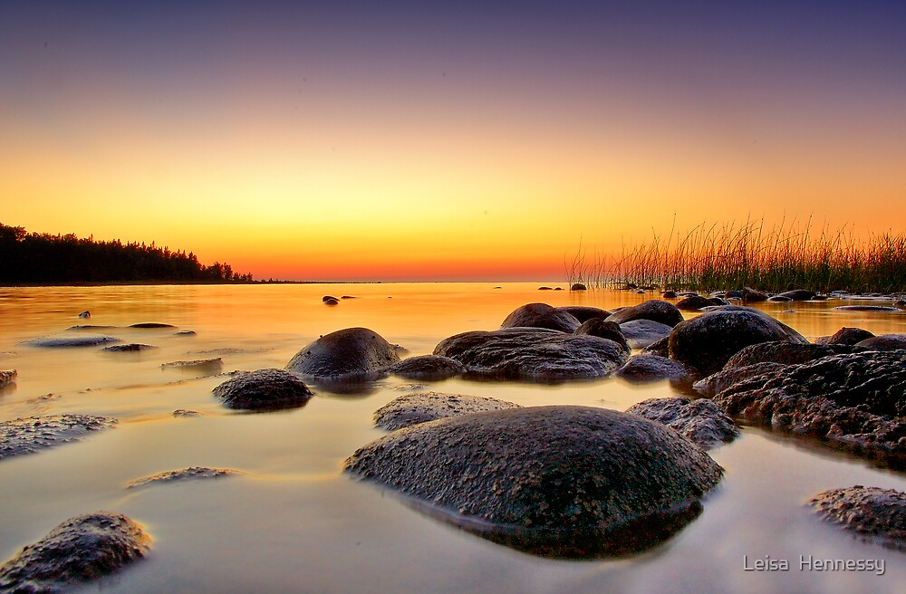 Macgregor Point  by Leisa  Hennessy