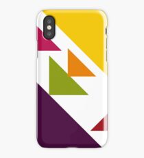Color 2017 iPhone Case/Skin