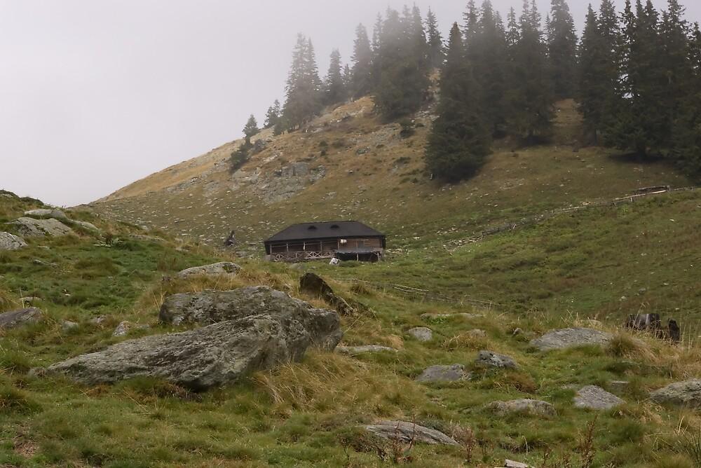Mountain sheepfold by ictin