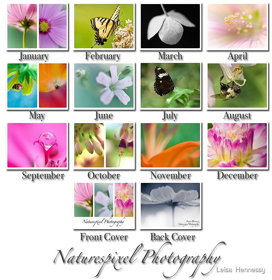 Naturespixel Photography Calendar 2008 by Leisa  Hennessy