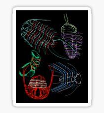 Ordovician Era Trilobites 2 Sticker