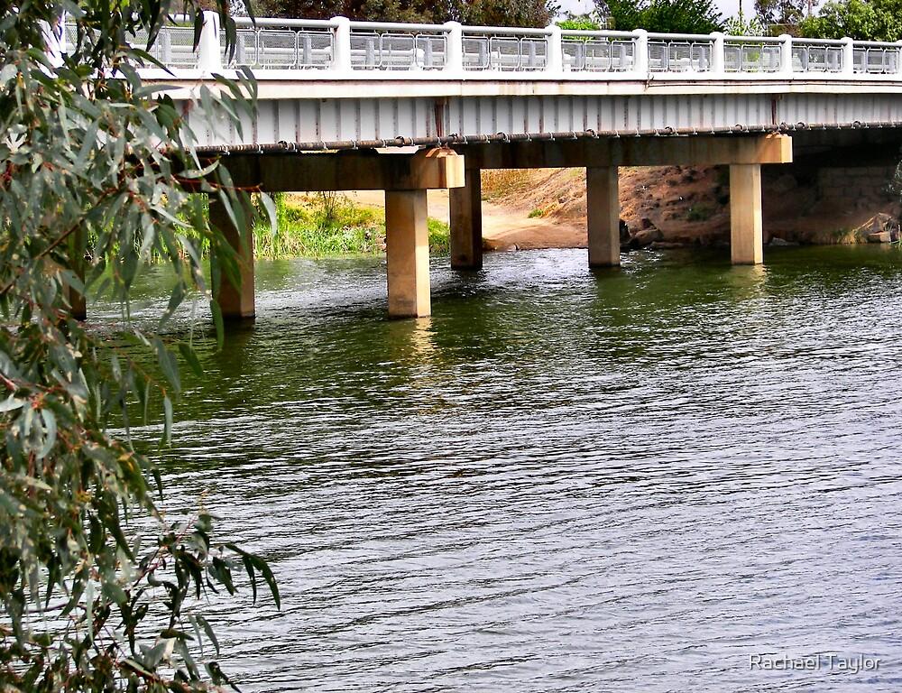 Road Bridge by Rachael Taylor