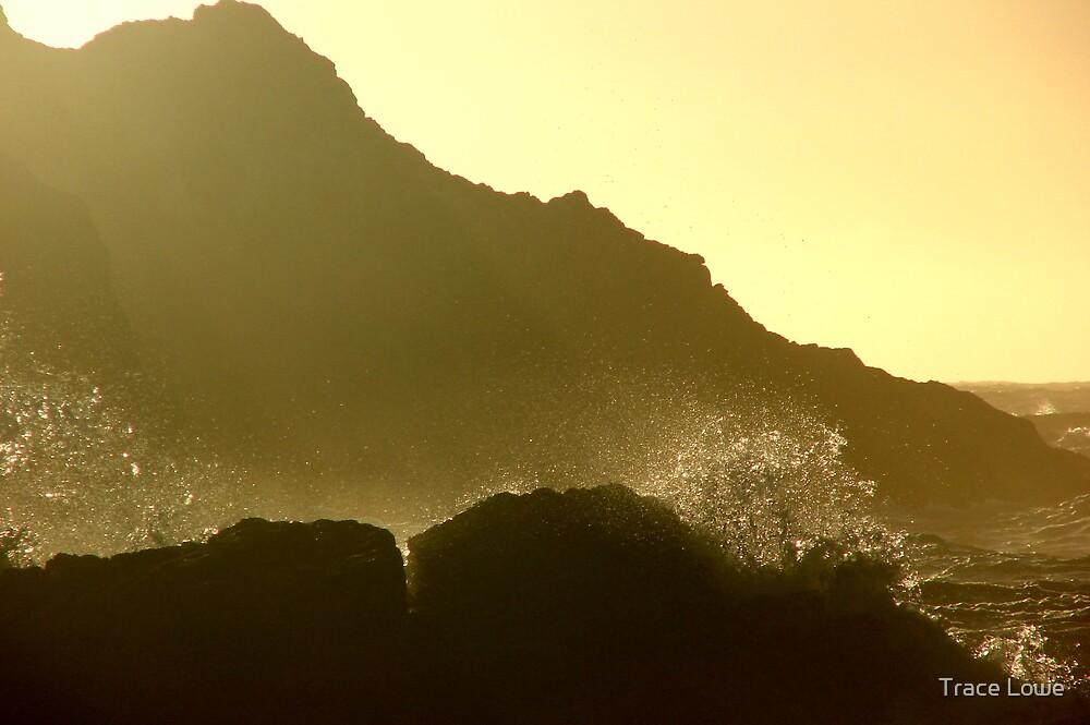 Splashing Surprise by Trace Lowe