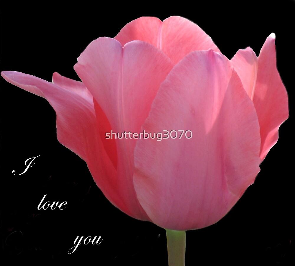 I love you by shutterbug3070