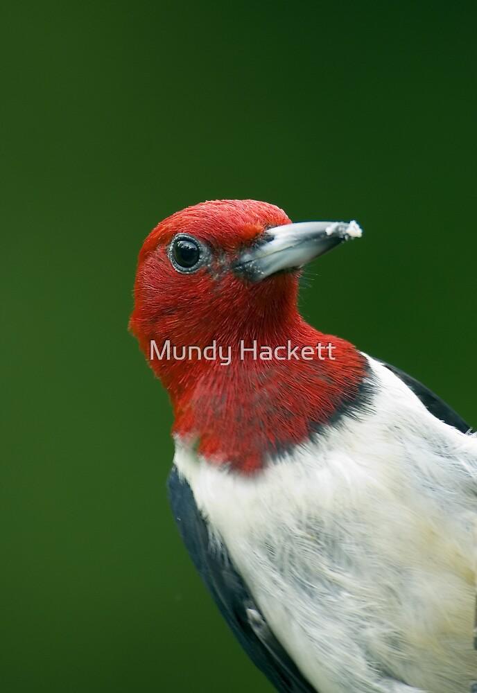 Redhead by Mundy Hackett