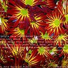 FLOWER POWER PROJECT 2007 by DarrellMoseley