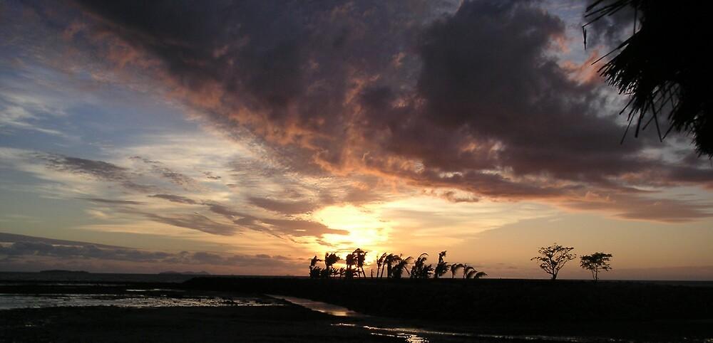 Palm Island Sunset by Rachel  Moait