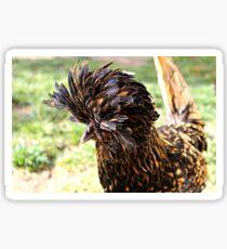 Golden Laced Polish Chicken Sticker