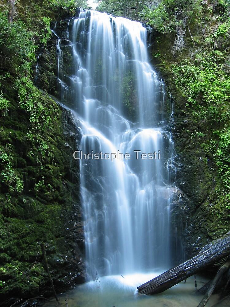 Berry Creek Falls by Christophe Testi