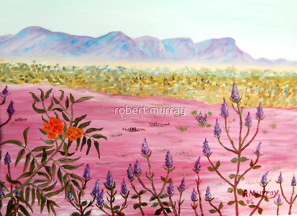 Flowers of the Pilbara by robert murray
