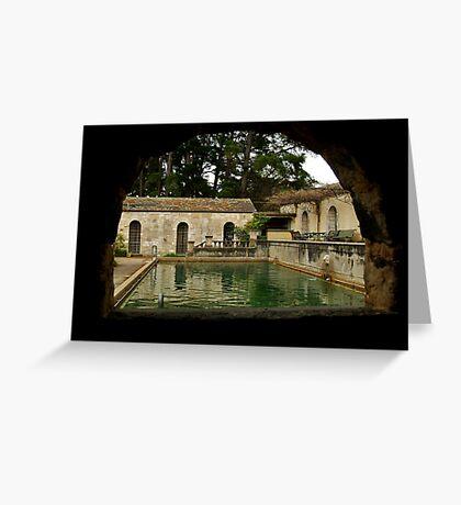 The Pool Greeting Card