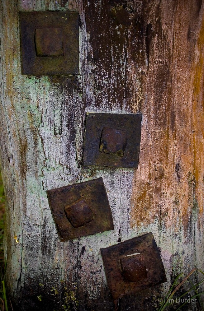 bolts by Tim Burder