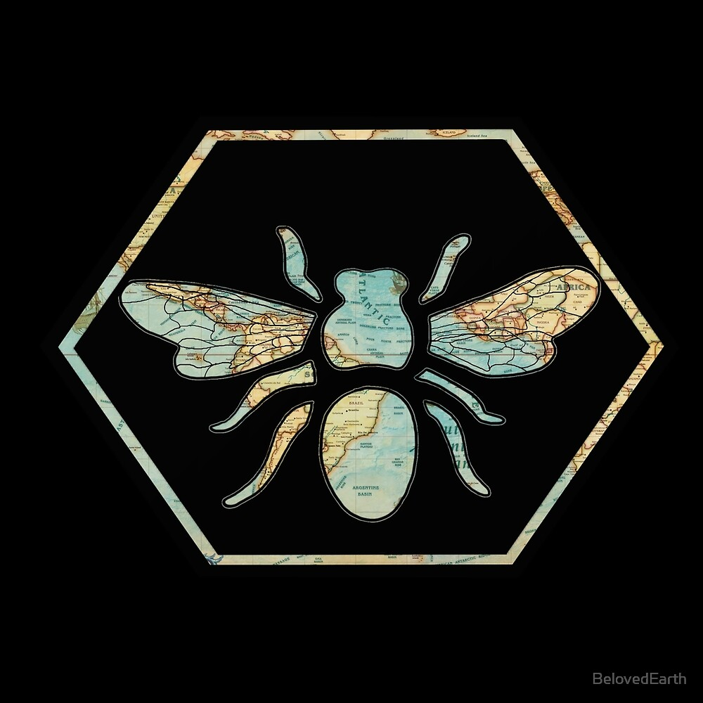 Honey Bee Hexagon by BelovedEarth