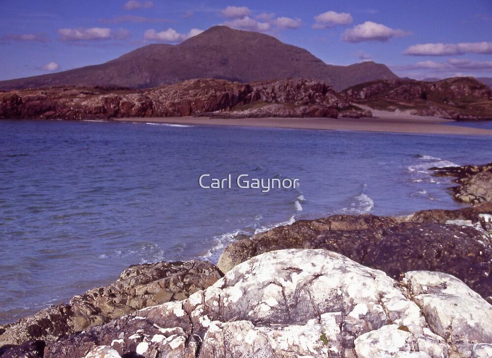 A Living Landscape  by Carl Gaynor