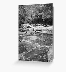 River in the Rainforrest Greeting Card