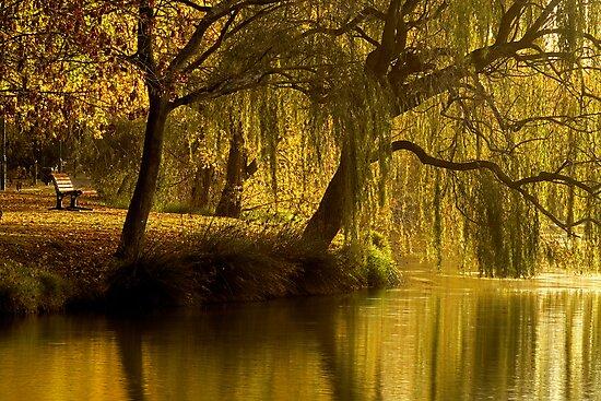 Lake Weeroona Reflection by AustralianImagery