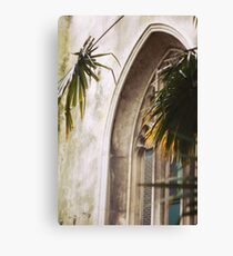 Church and Palms - Helios Photography Canvas Print