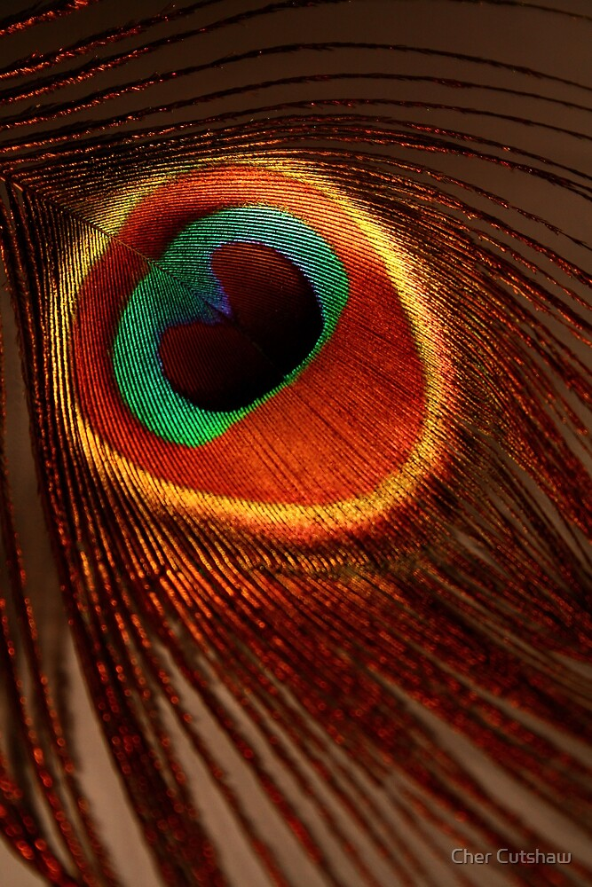 Ring Around My Heart by Cher Cutshaw