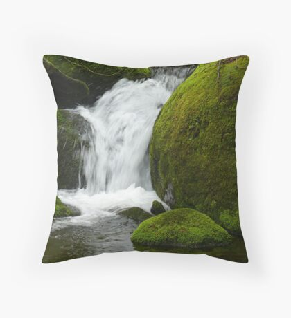 Natures Soul Throw Pillow