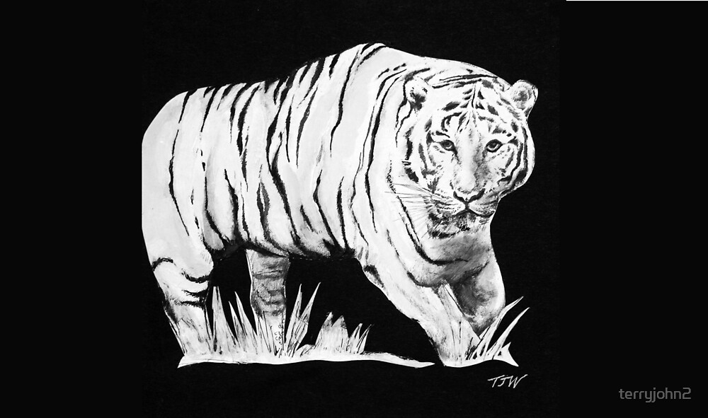 the tiger by terryjohn2