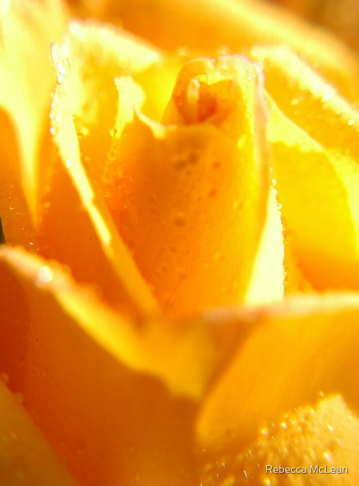 Mellow Yellow by Rebecca McLean