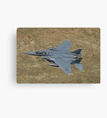 """48th Fighter Wing, """"Liberty"""", 494th Fighter Squadron, """"Panthers"""", RAF Lakenheath, UK, 48th FW Flagship, Canvas Print"""