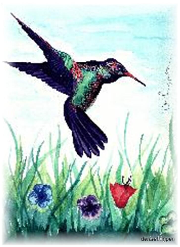 Hummingbird by denisethigpen