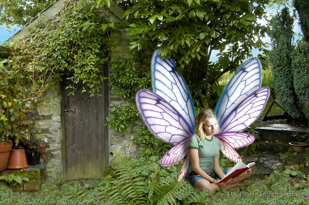 Fairy in the morning by Paul Jaffe Photographer
